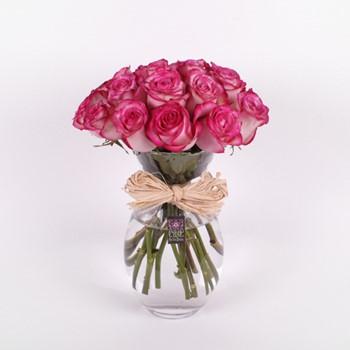 Roses Fraîches