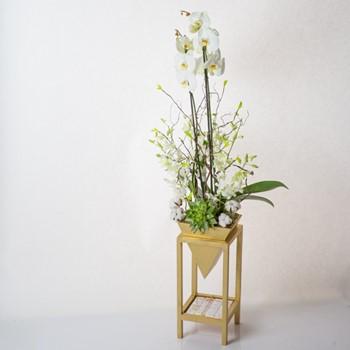 Flourishing Plants