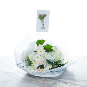 Beautiful In White II