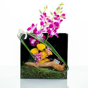 Santorini Box