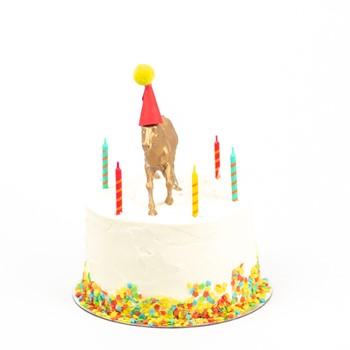 Cream Color Cake