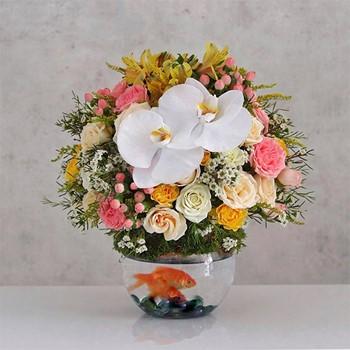 Medium Flores