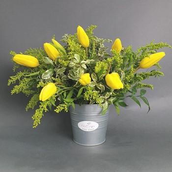 Yellow Farm Flowers