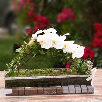 Floralia Orchids Tray II