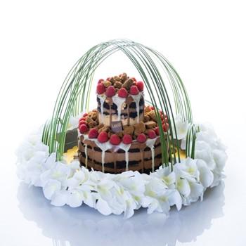 Crumb Berries Cake