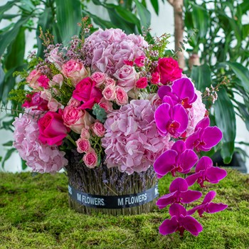 M Flowers Paradise