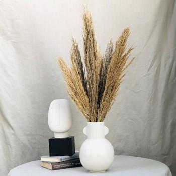 Pampas Vase