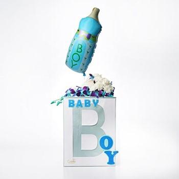 Baby Boy By G