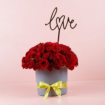 Red Love 11