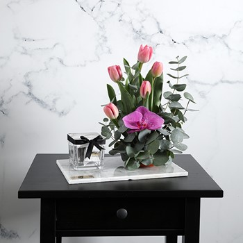 Marble Pink Tulip