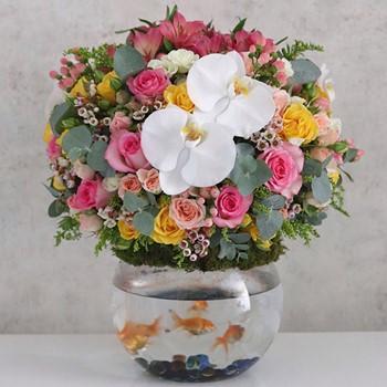 Large Flores