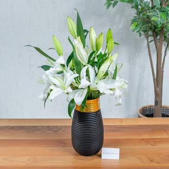 Black & Gold Lily