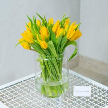 Shiny Yellow II