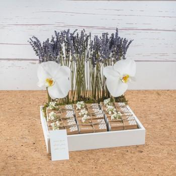 Lavender Giveaway