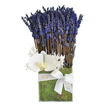 Acrylic Lavender
