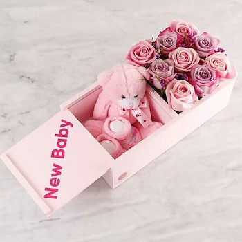 Baby Girl Box III