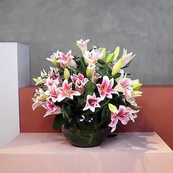 Pink Casablanca Vase