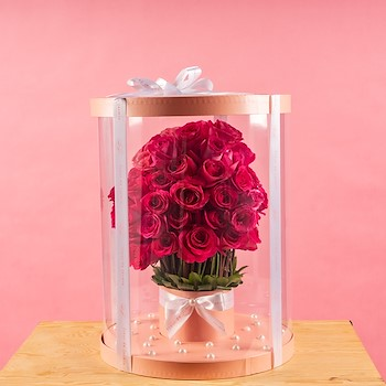 Beauty Pink 11