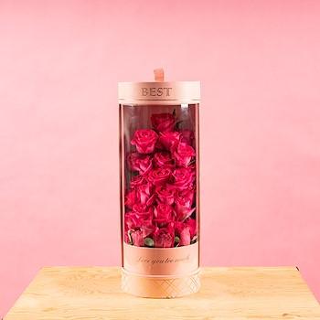Best-Too Much Pink