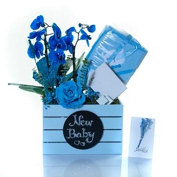 Blue Surprise V