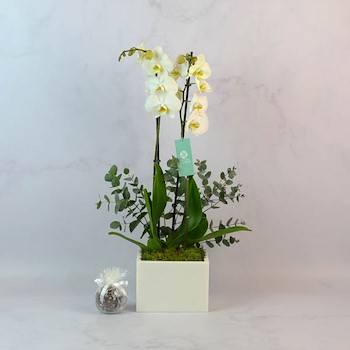 Marble Vase 3
