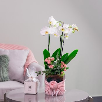 My Orchid Pink 2