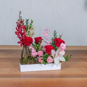 Rose Berry 1