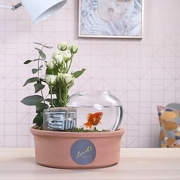 Pottery White Fish