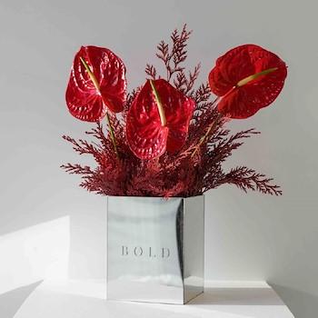 Ruby - Bold