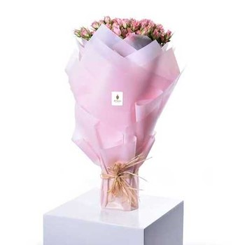 Sweet Flora 341