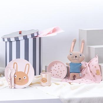 Baby Rabbit Gift