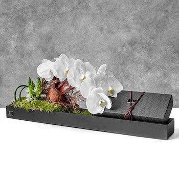 Orchid & Chocolate Box