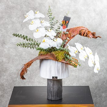 Modern Ceramic And Orchids