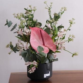 Pink Flora Arrangement