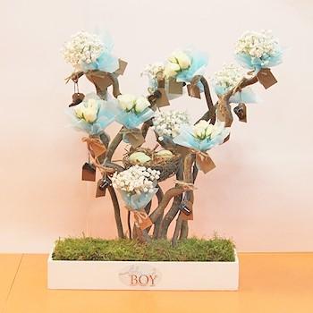 Baby Boy Flora