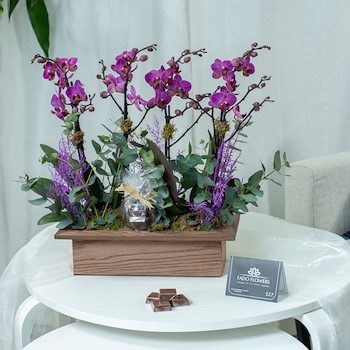 Orchid Wood 2