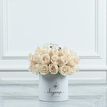 Bloom Box 11