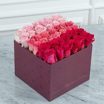Bloom Box Tri Color
