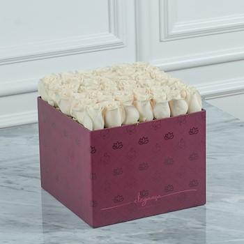 Bloom Box 1