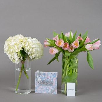 Hydrangea And Tulip