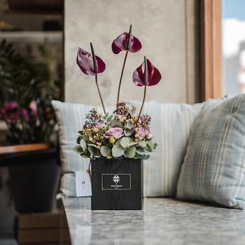 Anthurium Flower Box II