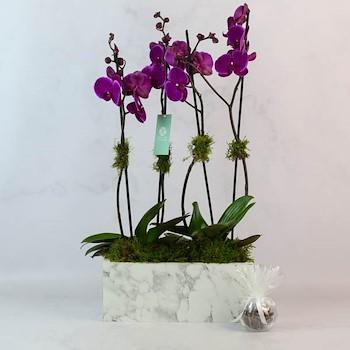 Marble Vase 18