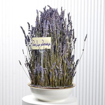15% OFF - Eid Lavender