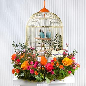 Birds Greeting