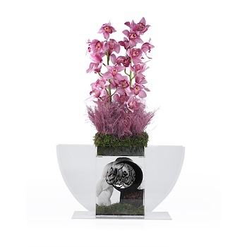 Floret Negsa 1