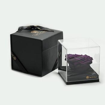 15% OFF -  Treasure Deep Purple