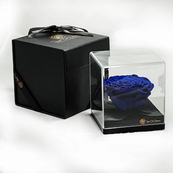 15% OFF - Treasure Royale Blue
