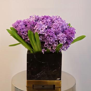 Happy purple