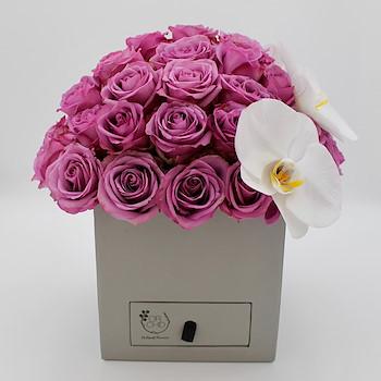 Elegance Box