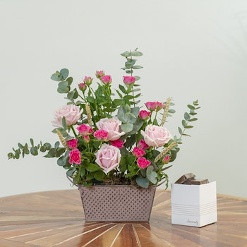Spring Rose I
